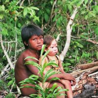 Le Hêtre Myriadis enfants forêt